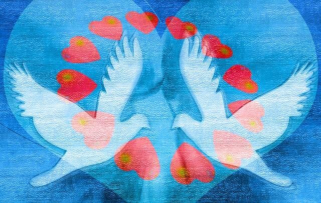 瞑想はヒーリングの最終奥義!これで世界平和も夢じゃないっ!!!