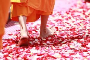 安心のサポート付き!新しい「通信瞑想講座」のご案内